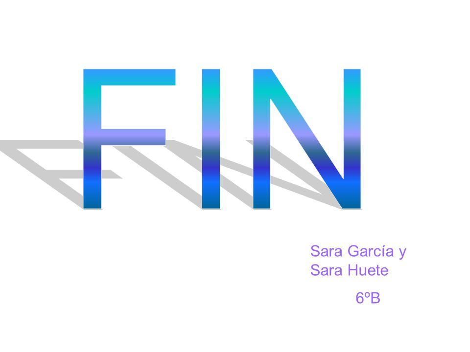 FIN Sara García y Sara Huete 6ºB