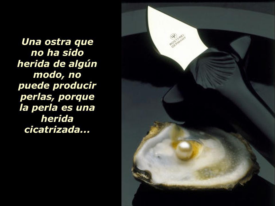 Una ostra que no ha sido herida de algún modo, no puede producir perlas, porque la perla es una herida cicatrizada...