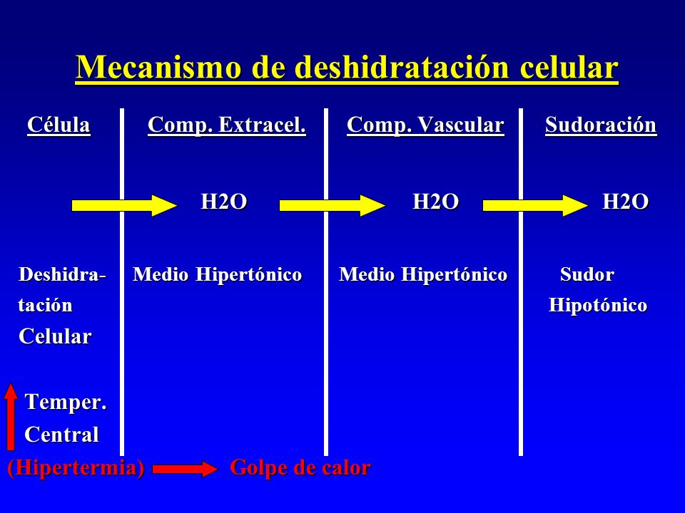 Mecanismo de deshidratación celular
