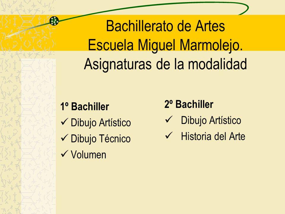 Bachillerato de Artes Escuela Miguel Marmolejo