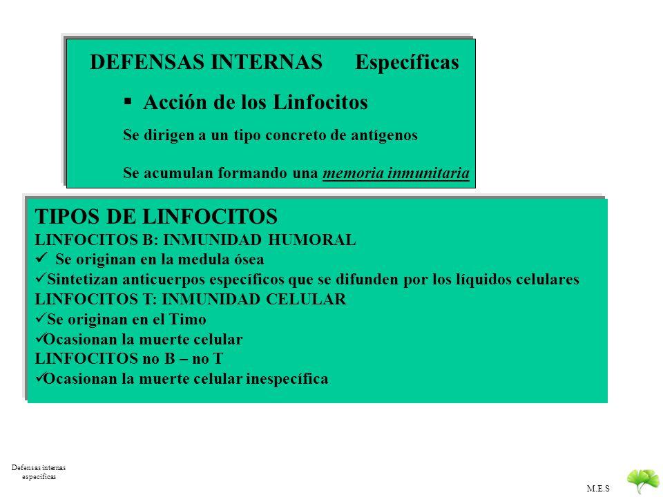 Defensas internas especificas