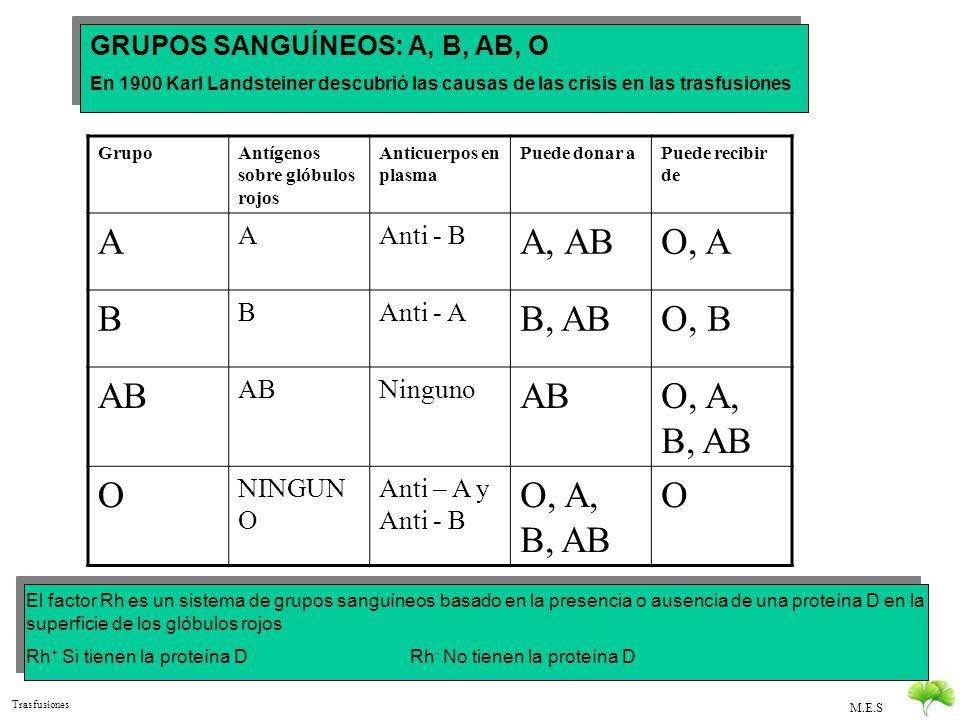 A A, AB O, A B B, AB O, B AB O, A, B, AB O