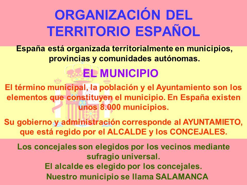 ORGANIZACIÓN DEL TERRITORIO ESPAÑOL