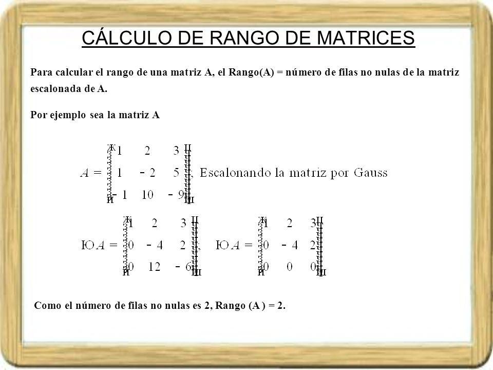 CÁLCULO DE RANGO DE MATRICES
