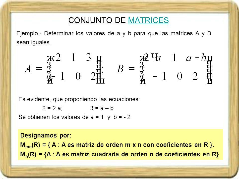 CONJUNTO DE MATRICES Designamos por: