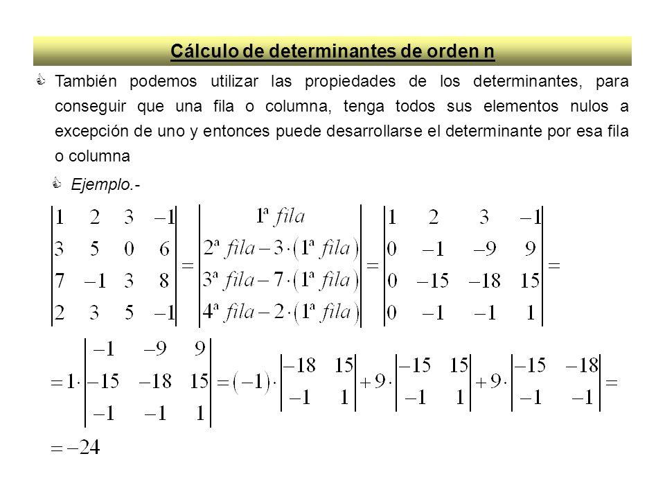 Cálculo de determinantes de orden n