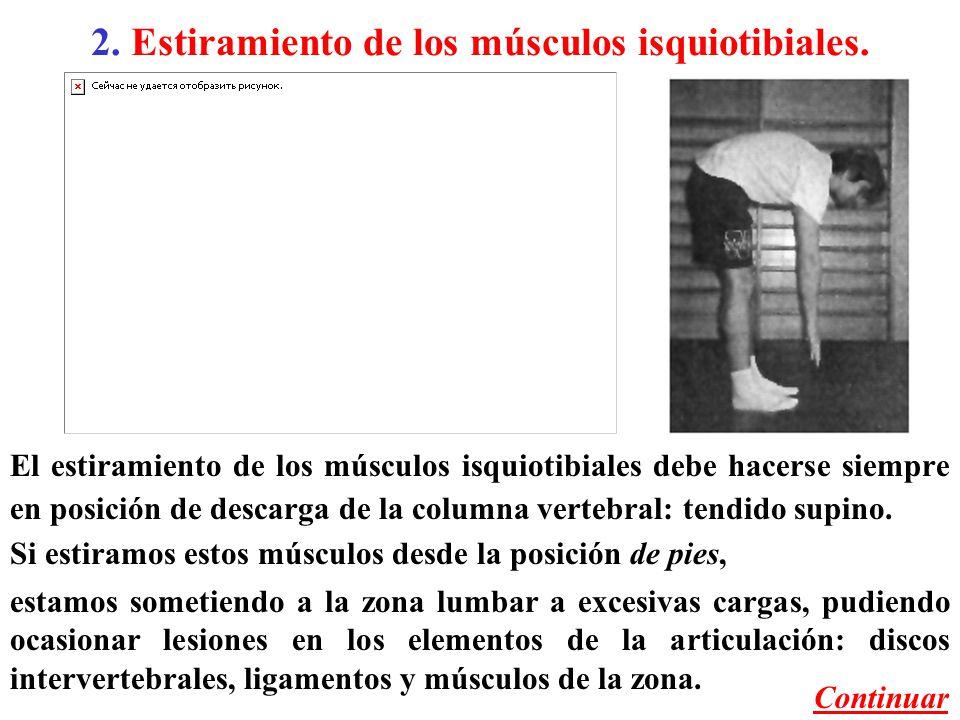 2. Estiramiento de los músculos isquiotibiales.