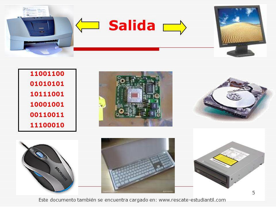 Salida11001100.01010101. 10111001. 10001001. 00110011.