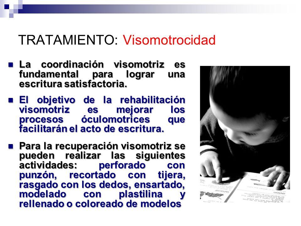TRATAMIENTO: Visomotrocidad