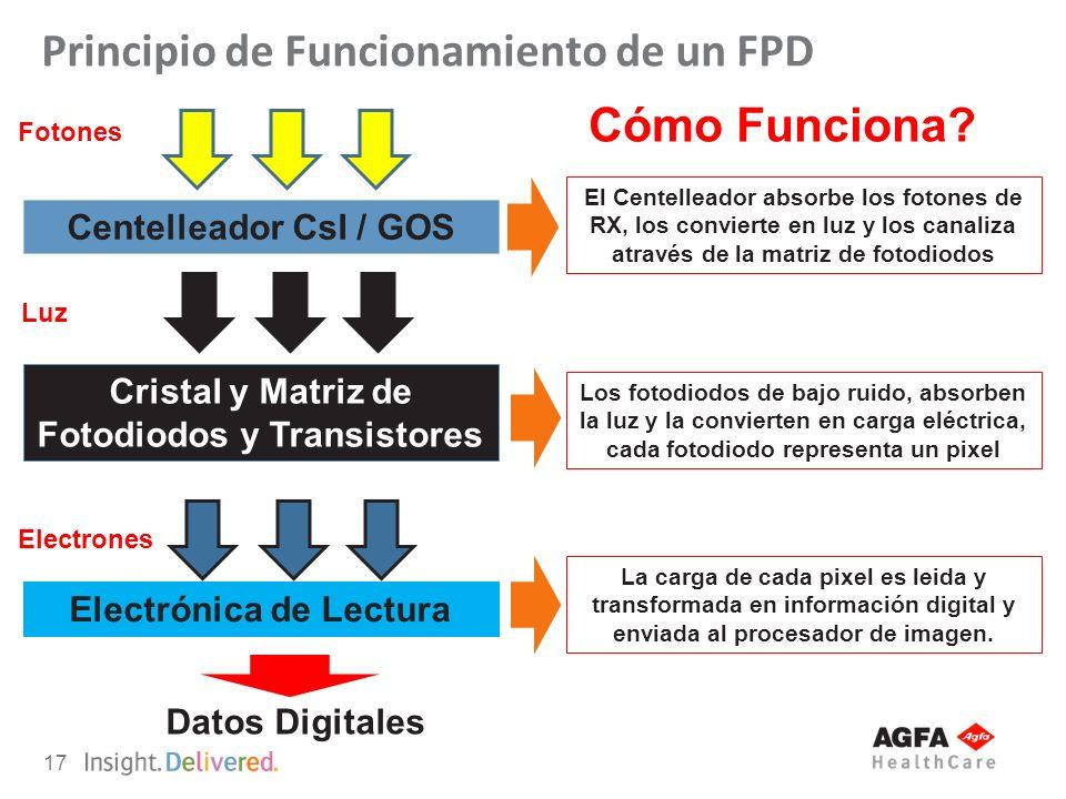 Principio de Funcionamiento de un FPD