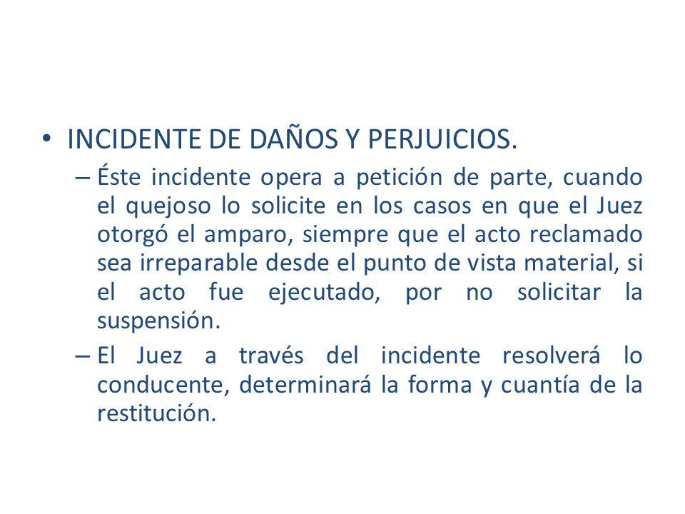 INCIDENTE DE DAÑOS Y PERJUICIOS.