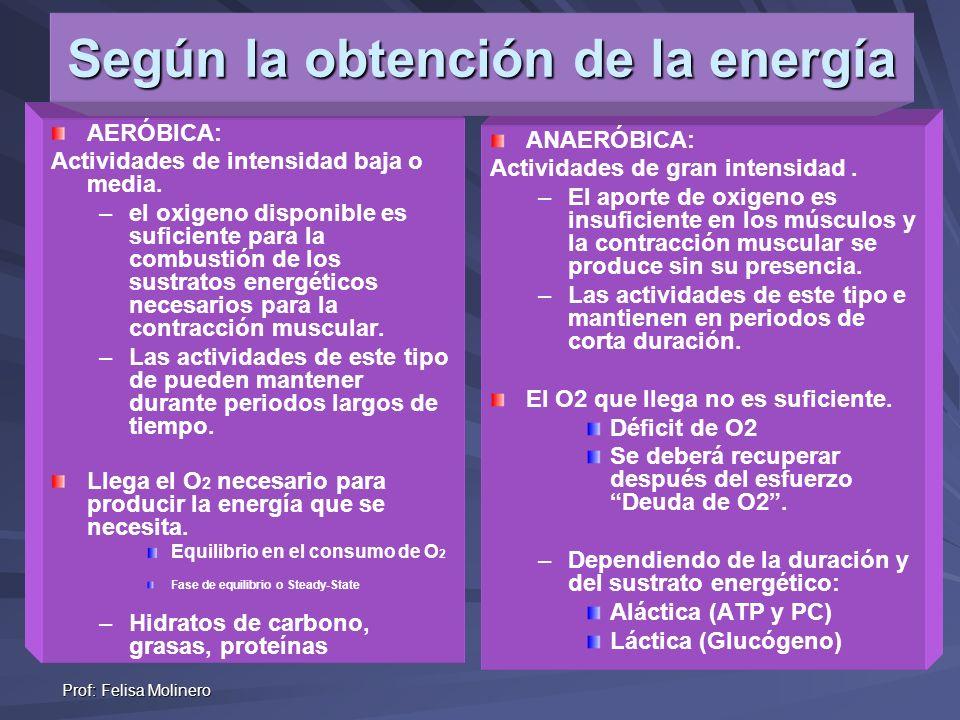 Según la obtención de la energía
