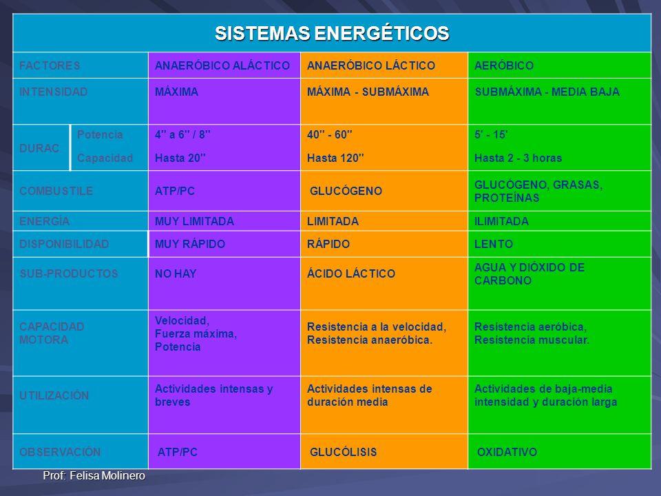 SISTEMAS ENERGÉTICOS FACTORES ANAERÓBICO ALÁCTICO ANAERÓBICO LÁCTICO