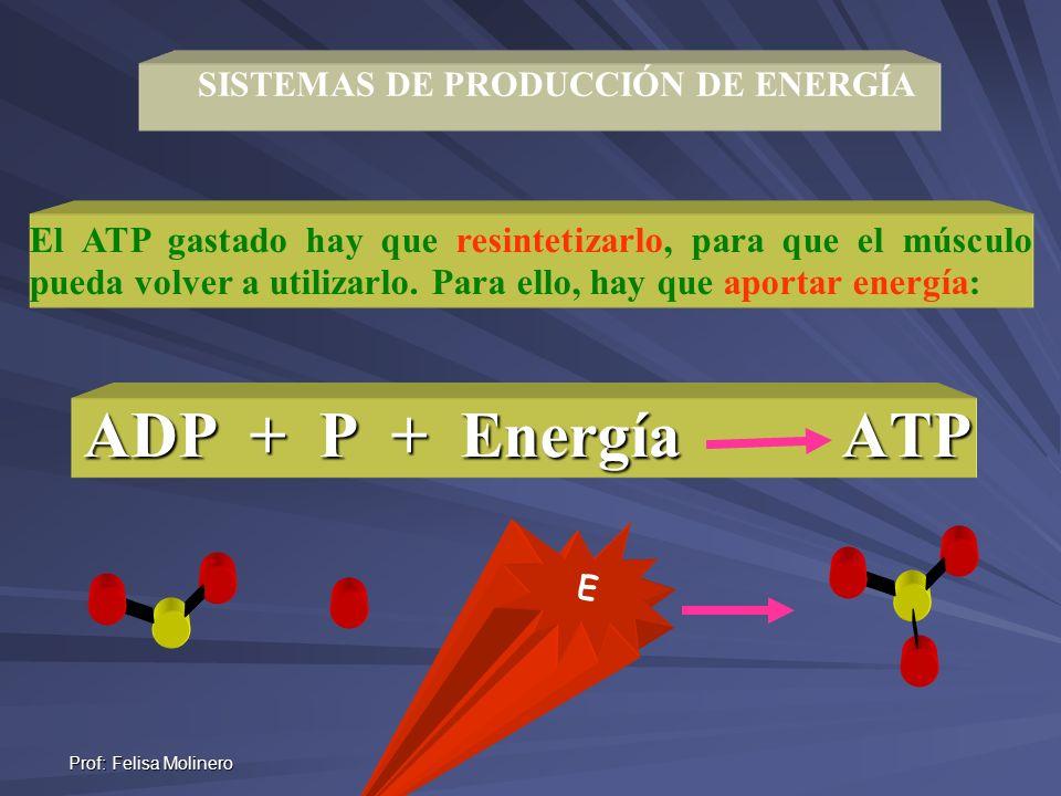 SISTEMAS DE PRODUCCIÓN DE ENERGÍA