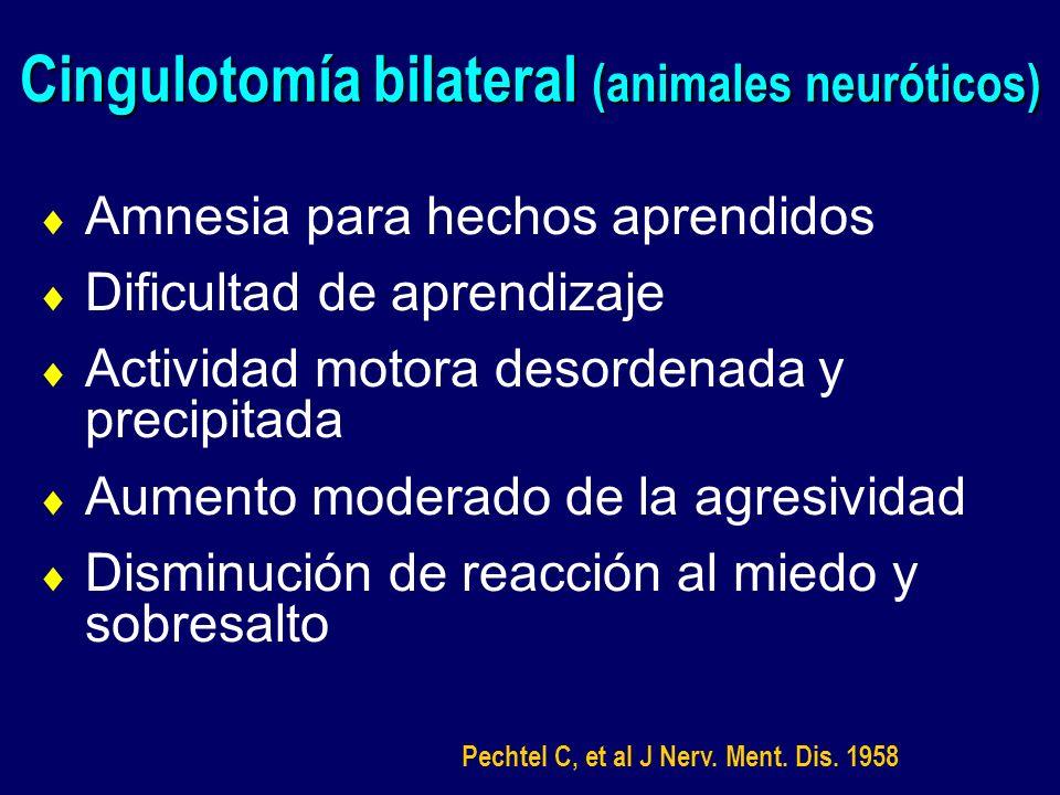 Cingulotomía bilateral (animales neuróticos)