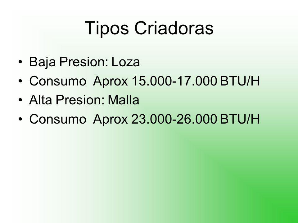 Tipos Criadoras Baja Presion: Loza Consumo Aprox 15.000-17.000 BTU/H