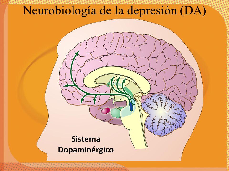 Neurobiología de la depresión (DA)