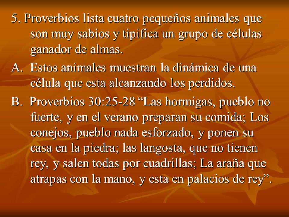 5. Proverbios lista cuatro pequeños animales que son muy sabios y tipifica un grupo de células ganador de almas.