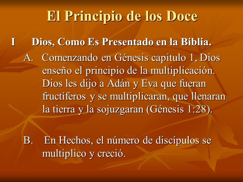 El Principio de los Doce