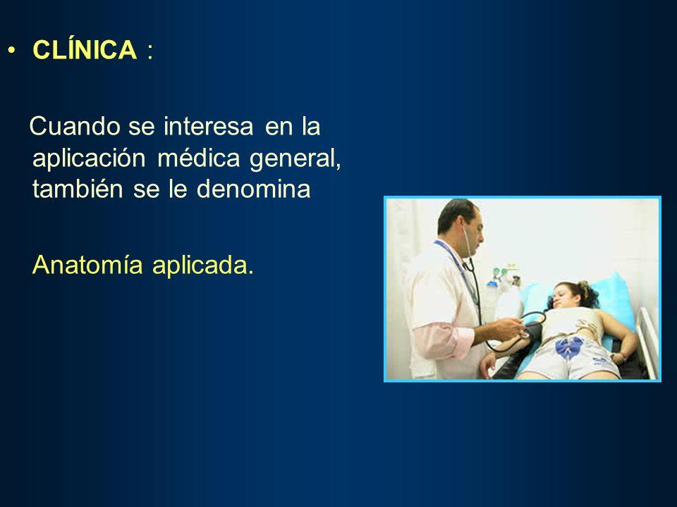 CLÍNICA : Cuando se interesa en la aplicación médica general, también se le denomina.