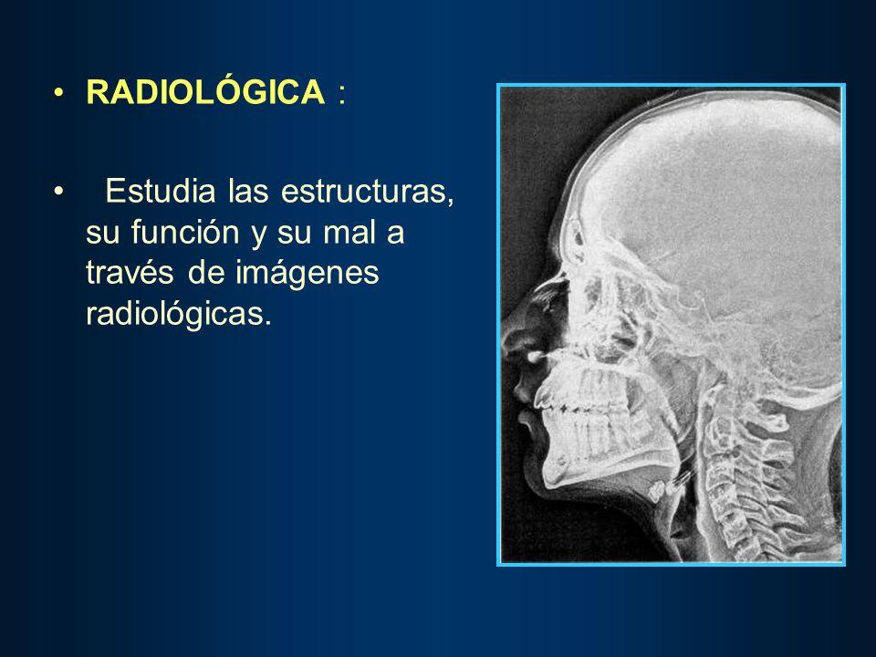 RADIOLÓGICA : Estudia las estructuras, su función y su mal a través de imágenes radiológicas.