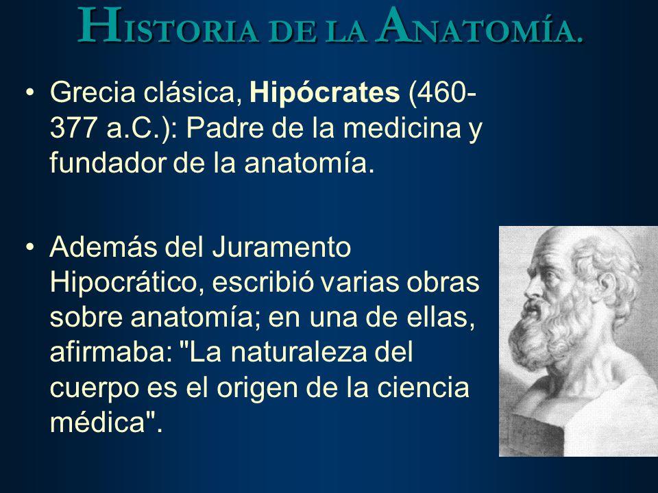 HISTORIA DE LA ANATOMÍA.