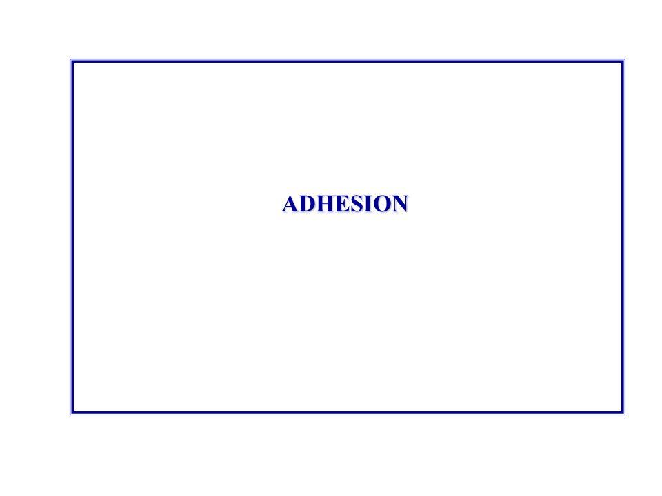 ADHESION 58