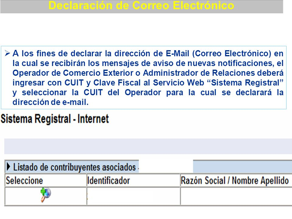 Declaración de Correo Electrónico