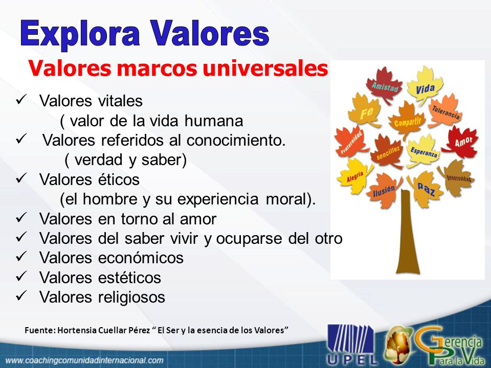 Valores marcos universales