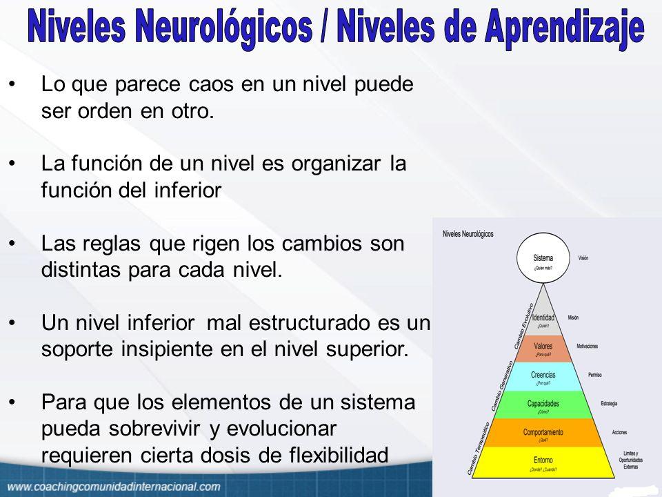 Niveles Neurológicos / Niveles de Aprendizaje