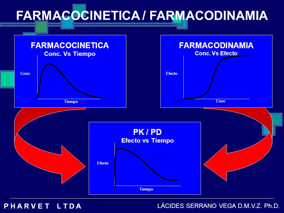 FARMACOCINETICA / FARMACODINAMIA