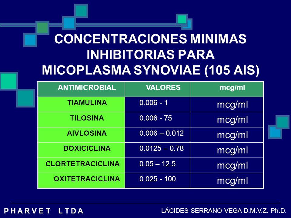 CONCENTRACIONES MINIMAS INHIBITORIAS PARA MICOPLASMA SYNOVIAE (105 AIS)