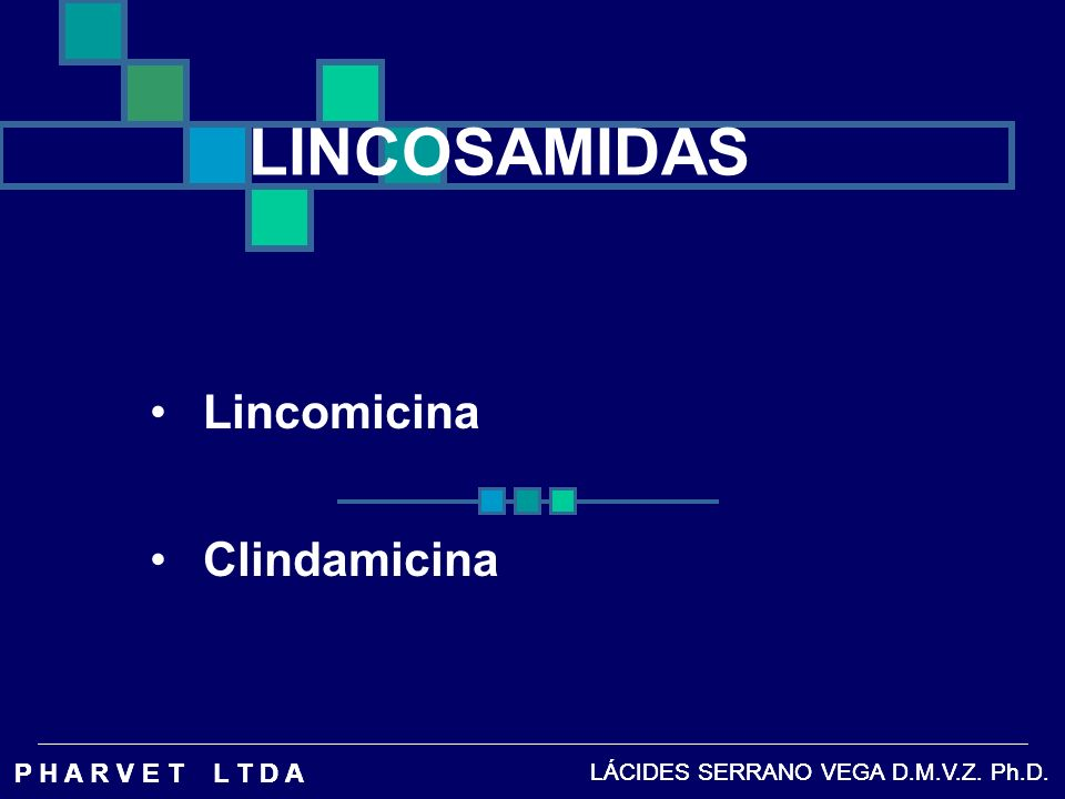 LINCOSAMIDAS Lincomicina Clindamicina P H A R V E T L T D A