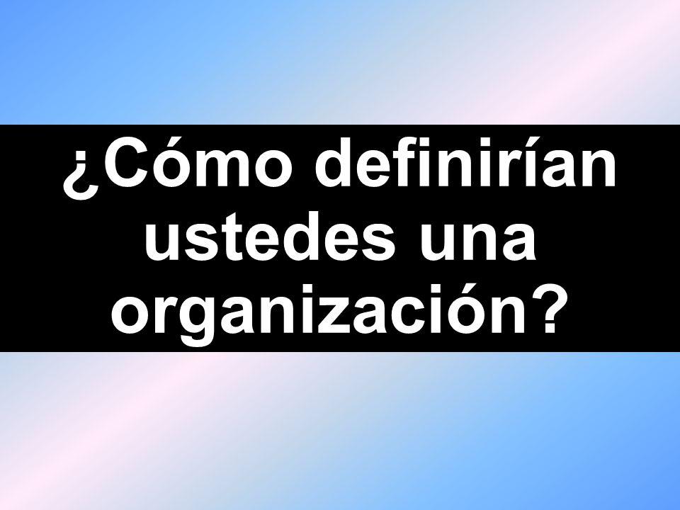 ¿Cómo definirían ustedes una organización