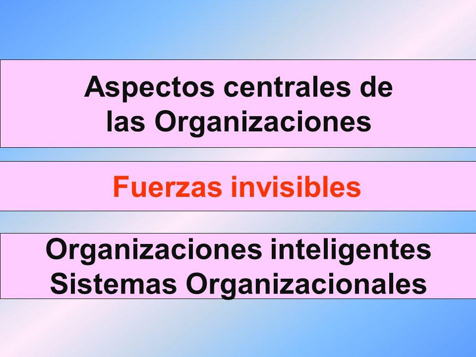 Aspectos centrales de las Organizaciones