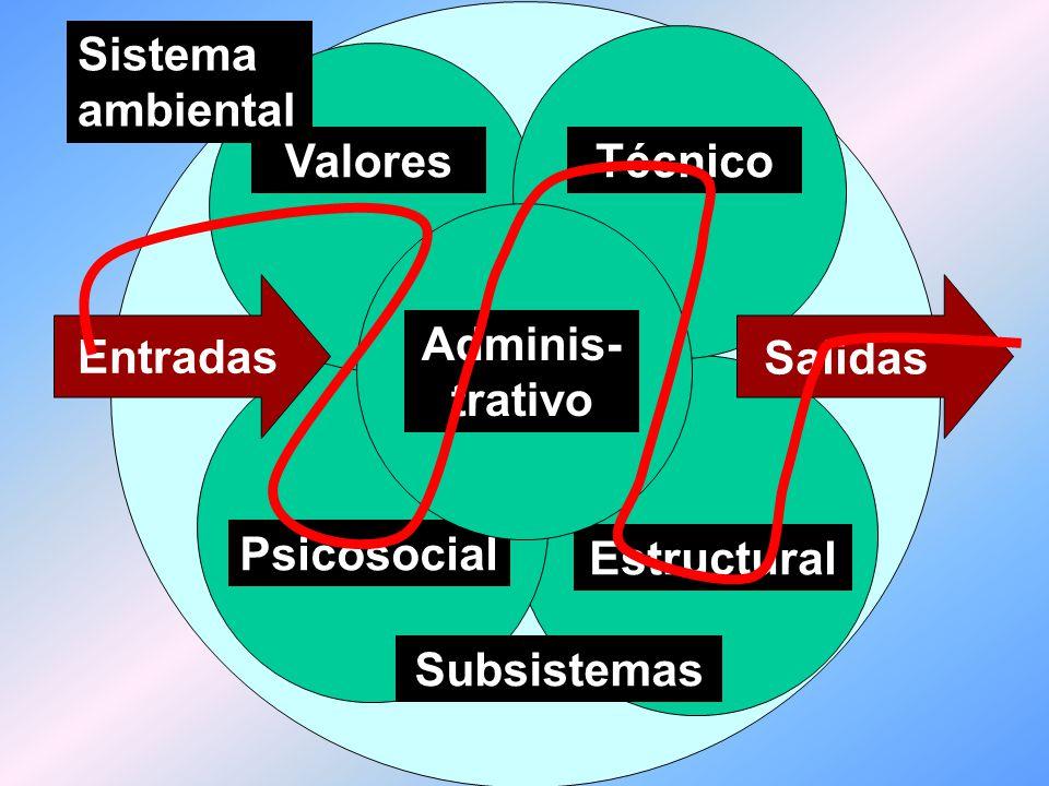 Estructural Psicosocial. Subsistemas. Valores. Técnico. Adminis- trativo. Sistema ambiental. Entradas.