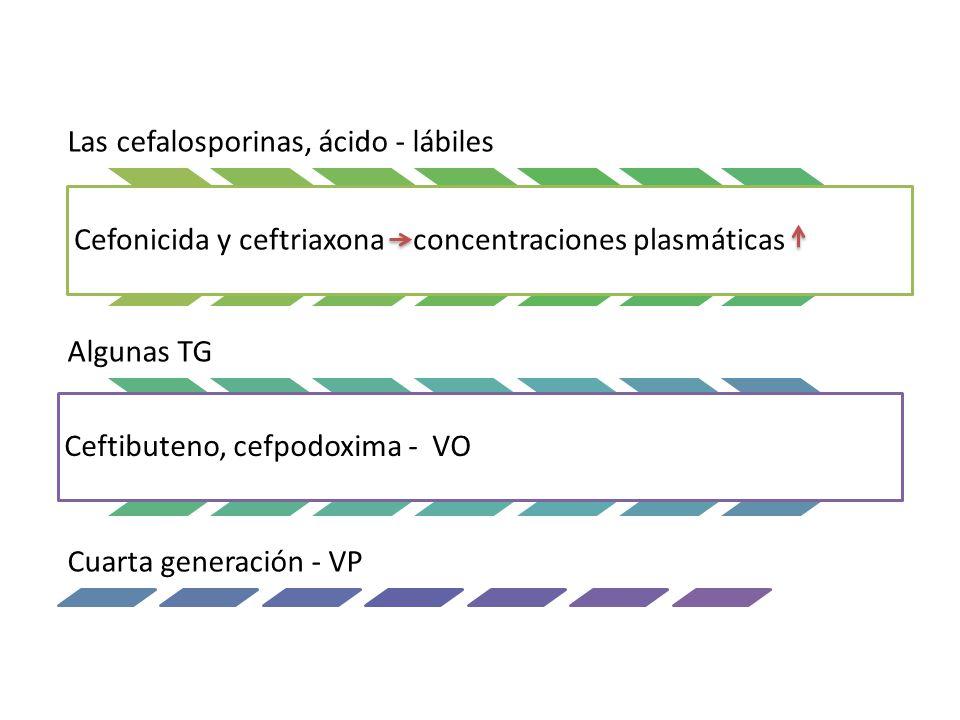 Las cefalosporinas, ácido - lábiles