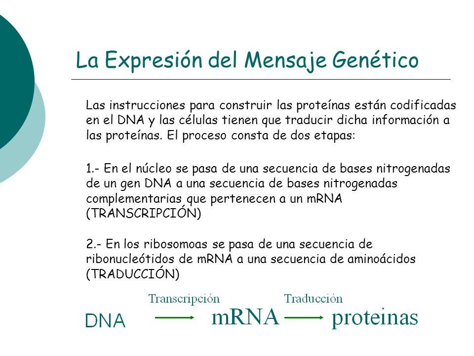 La Expresión del Mensaje Genético