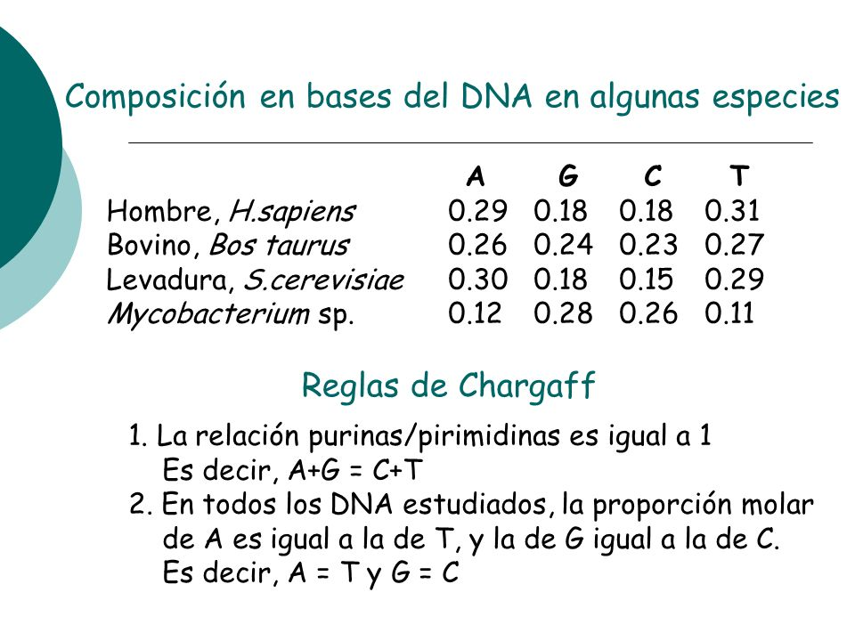 Composición en bases del DNA en algunas especies