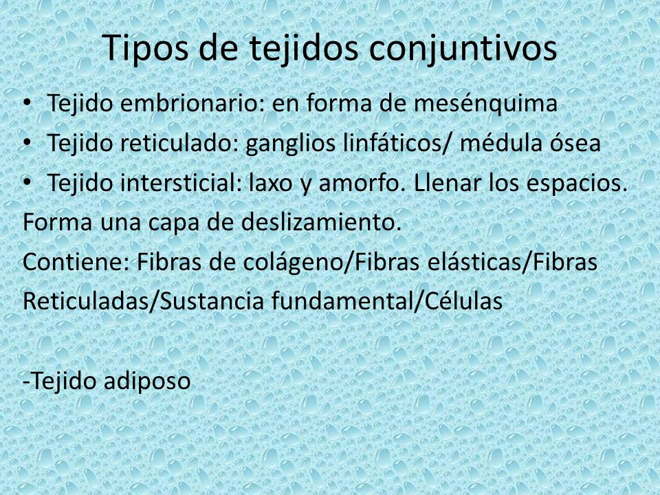 Tipos de tejidos conjuntivos