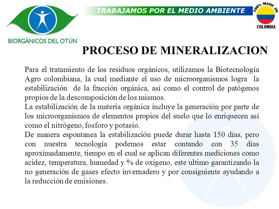 PROCESO DE MINERALIZACION