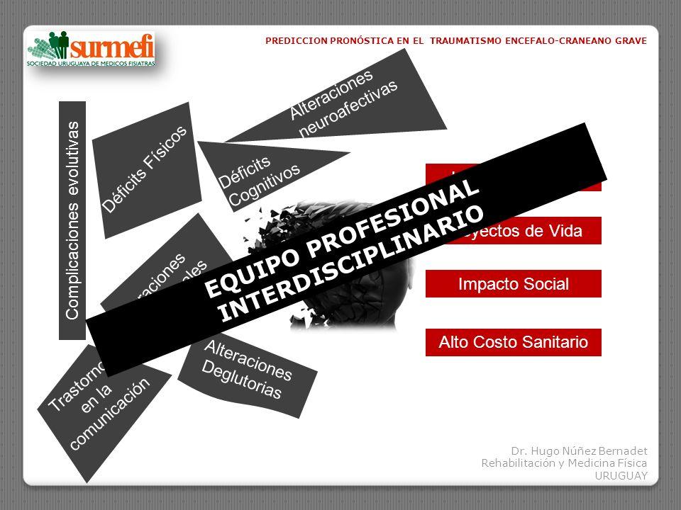 EQUIPO PROFESIONAL INTERDISCIPLINARIO