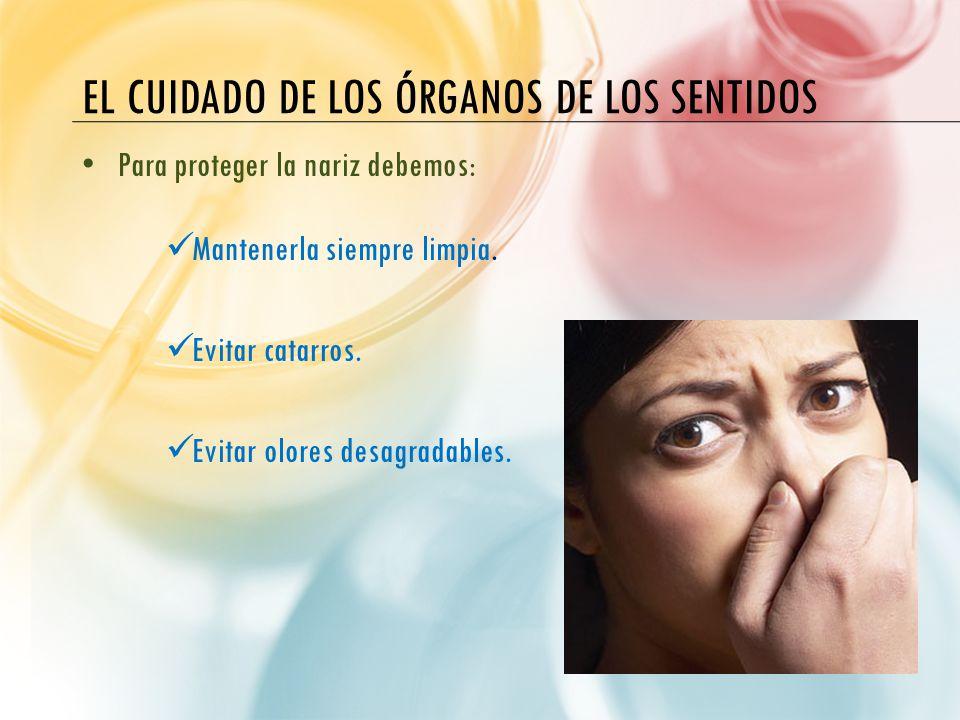 Unidad did ctica 2 los sentidos ppt video online descargar for El divan de los sentidos