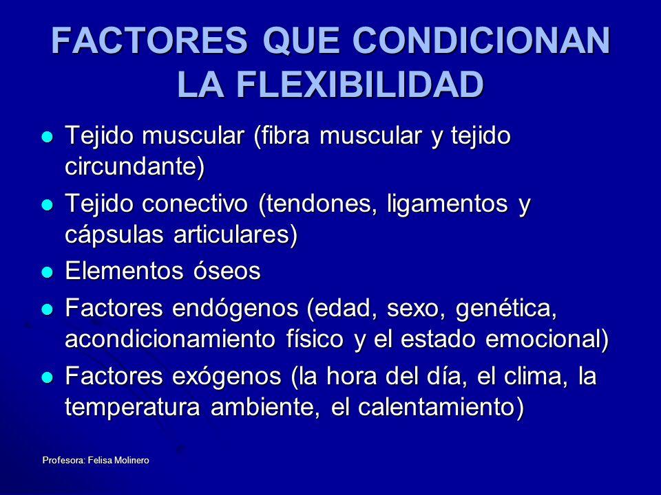 FACTORES QUE CONDICIONAN LA FLEXIBILIDAD