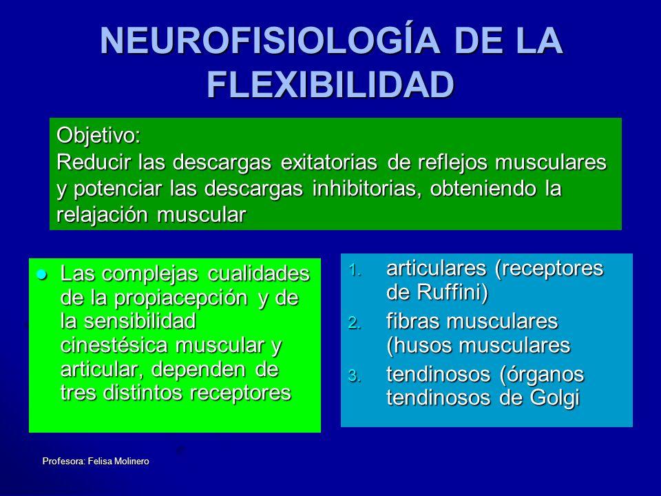 NEUROFISIOLOGÍA DE LA FLEXIBILIDAD
