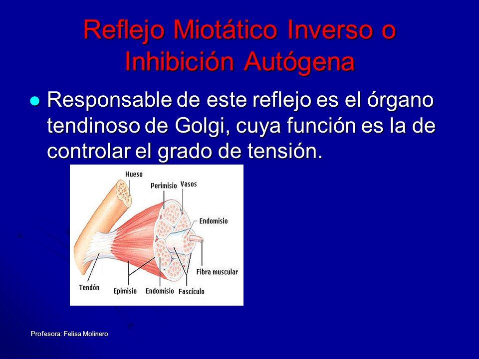 Reflejo Miotático Inverso o Inhibición Autógena