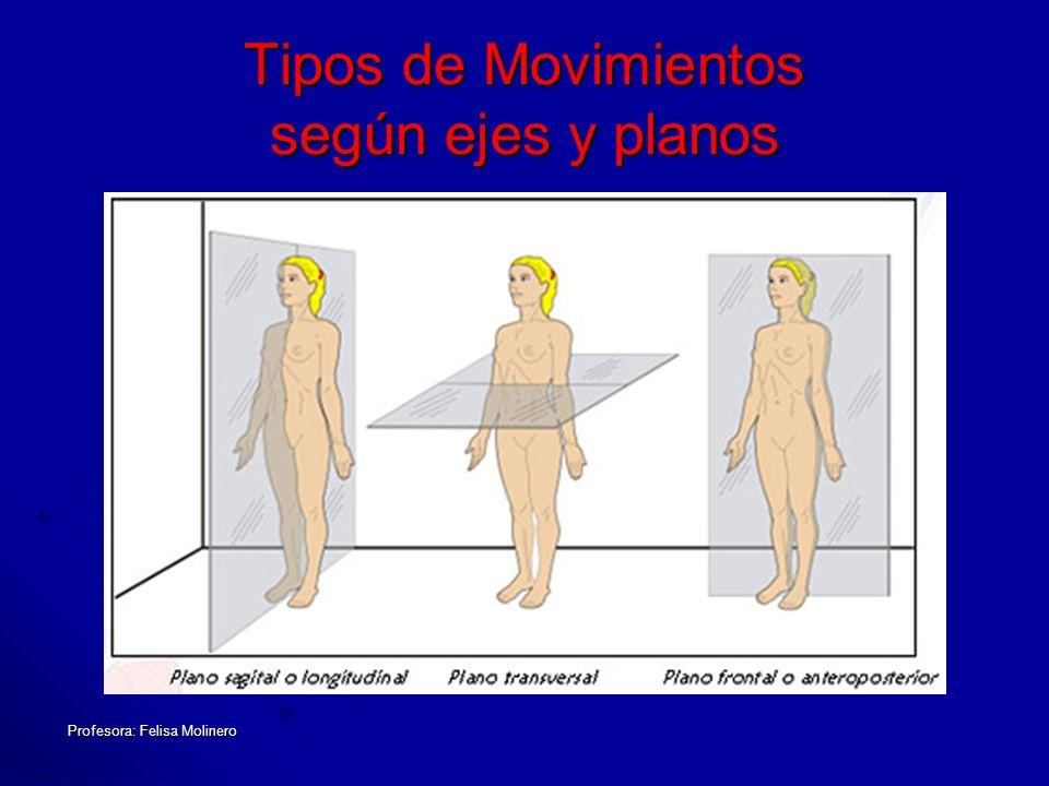 Tipos de Movimientos según ejes y planos