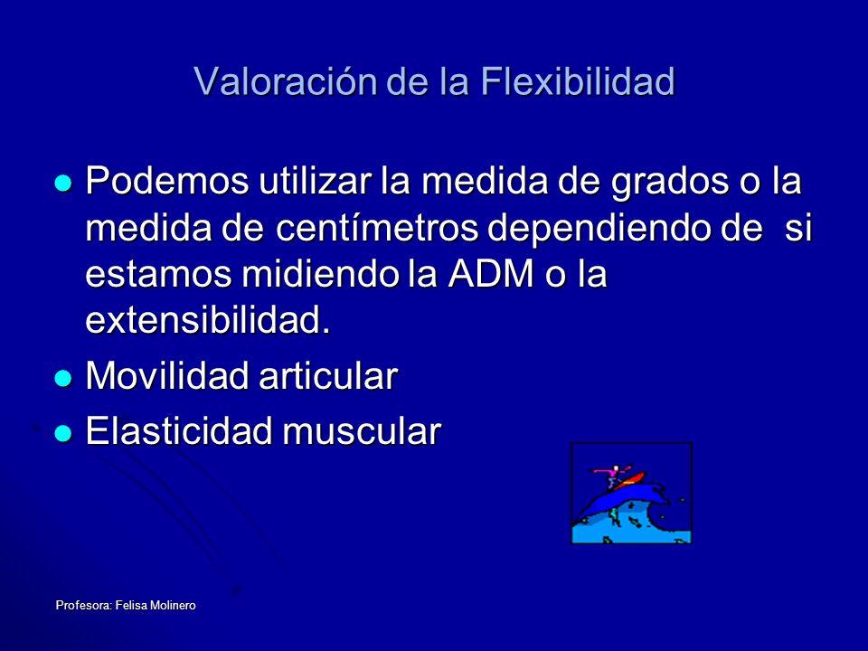 Valoración de la Flexibilidad
