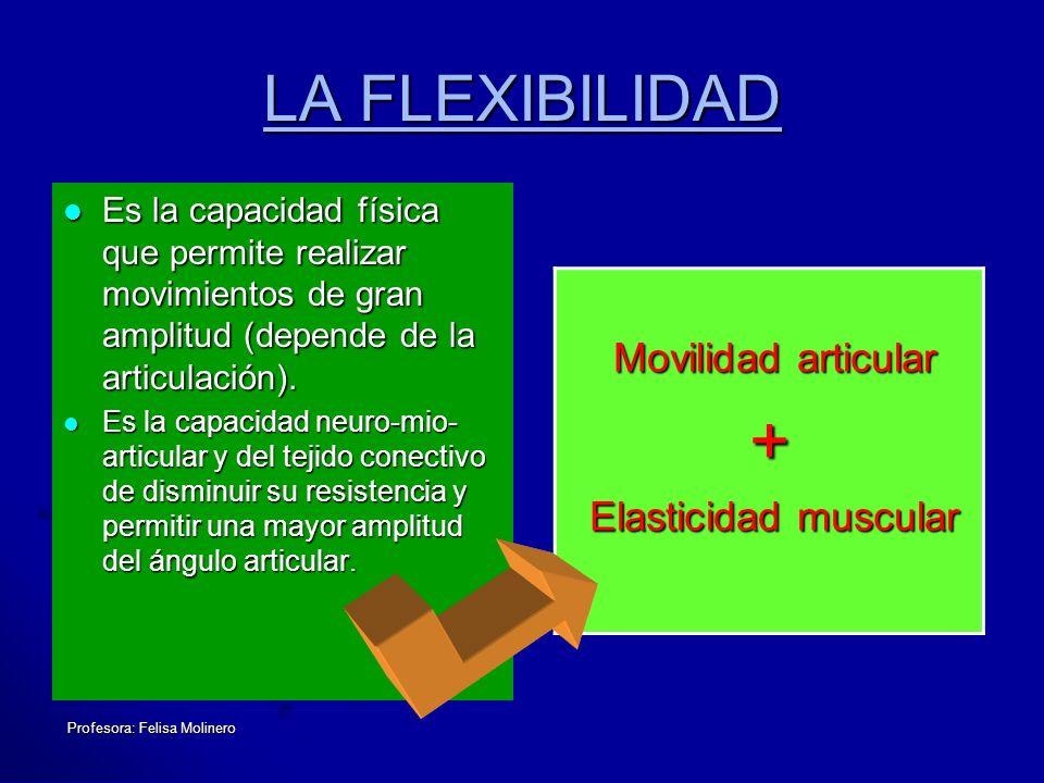 + LA FLEXIBILIDAD Movilidad articular Elasticidad muscular