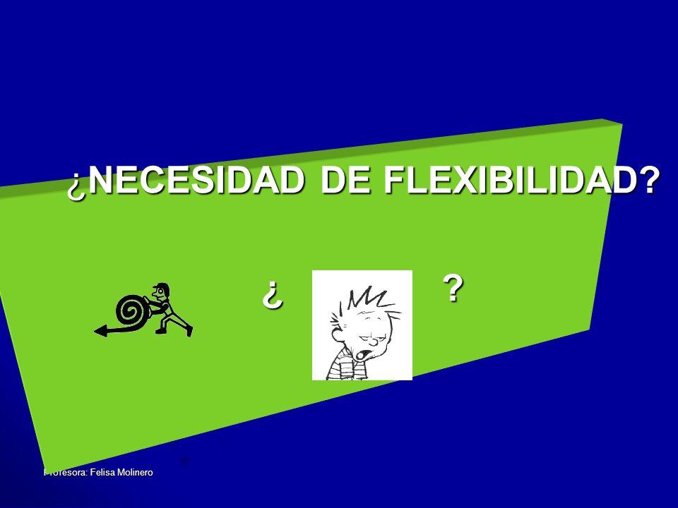 ¿NECESIDAD DE FLEXIBILIDAD